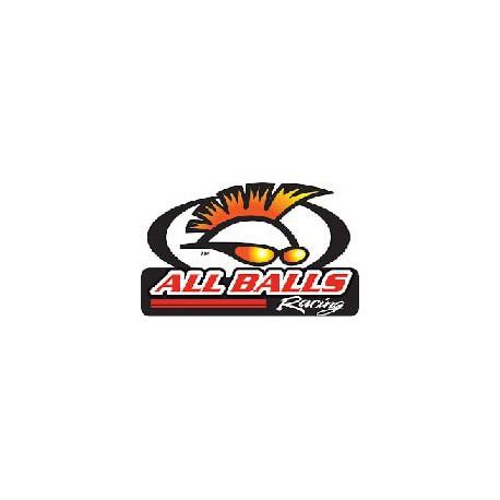 ROULEMENTS POUR KIT PERFROMANCE ALL-BALLS POUR KTM/HUSABERG